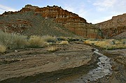 Dawn Runoff - Red Rock Canyon