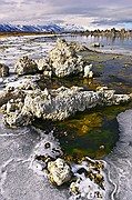 Mono Lake Tufas and Ice - Mono Lake