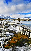 Mono Lake Minerals and Ice - Eastern Sierras