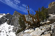 Weathered Pass - Kearsarge Pass
