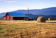 Morning Chores - Rolled Hay and Red Barn - Priest River Basin